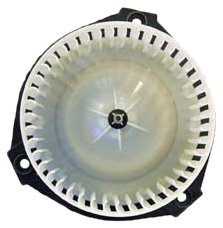 (TYC 700109 Chevrolet/GMC/Oldsmobile Replacement Blower Assembly)