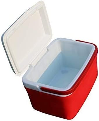 Picnic Cooler Box - Caja De Aislamiento para Exteriores - Car Portable House Cooler Box - Bebida Refrigerada Fruta Viajes Almuerzo Acampar Comida Rápida: Amazon.es: Deportes y aire libre