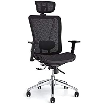 1876548389f Amazon.com  BestMassage High Back Adjustable Mesh Home Office Chair ...