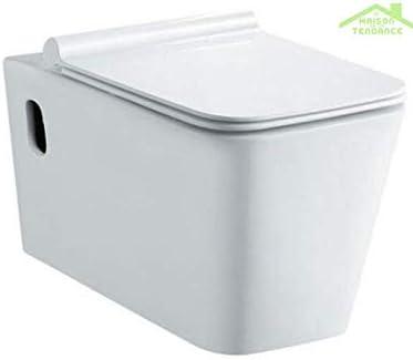 KARAG - Pack de WC supsendu sin Brida Rimless NENY (58 x 36 x 31 ...