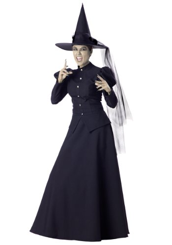 InCharacter Women's Witch Costume, Medium by Fun -