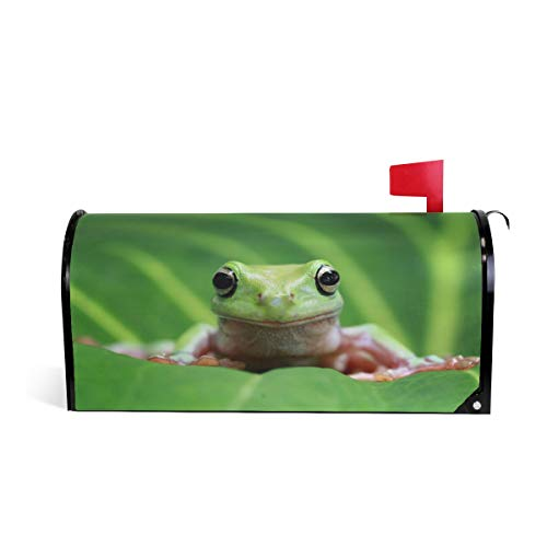 AUUXVA CUTEXL Magnetic Mailbox Covers Funny Dumpy Frog On Leaves Mailbox Letter Post Box Cover Wrap Garden Yard Home Decor Standard Size 20.7