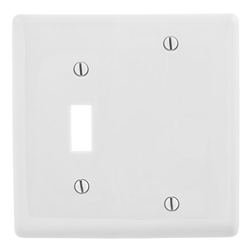 Bryant Electric NP113W 2-Gang 1-Toggle 1-Blank Nylon Wallplate, Standard, White