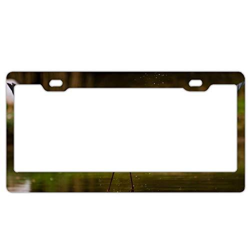 - Alumina Stork Lake Fish Walking Paths License Plate Frame