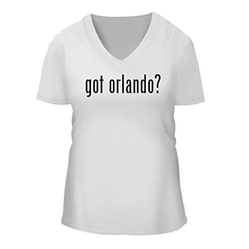 got orlando? - A Nice Women's Short Sleeve V-Neck T-Shirt Shirt, White, - Fl Airports Orlando