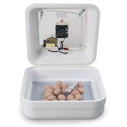 Nasco Hova-Bator Incubator with Picture Window - (Thermal Hova Bator Incubator)