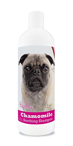 Healthy Breeds Chamomile Dog Shampoo & Conditioner with Oatmeal & Aloe for Pug, Brown - OVER 200 BREEDS - 8 oz - Gentle for Dry Itchy Skin - Safe with Flea and Tick Topicals (Best Dog Shampoo For Pugs)
