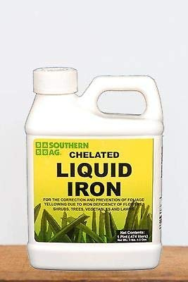 Southern Ag Chelated Liquid Iron, 16 OZ ()