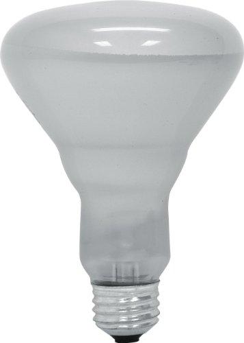 GE Lighting 65 Watt 700 Lumen Floodlight