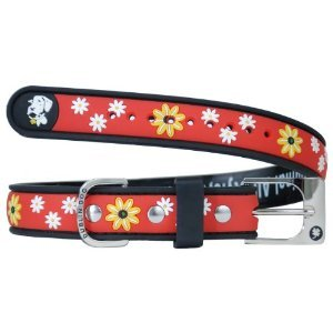 All Style No Stink Daisy Daze - Black - Eyed Susan - Small