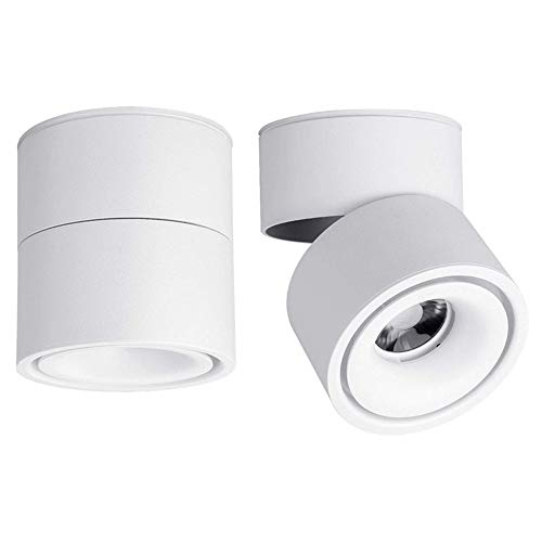 LED Indoor Ceiling Spotlight 360°Adjustable -Surface Mounted COB Lighting-10W LED Warm White Light 3000K/Cool White 6000K Ceiling Downlight -Aluminum Wall Lamp/Wall Swivel Lamp(White,6000K Cool White)