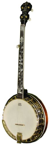 Morgan Monroe MFB-4DX/C Banjo, Gold