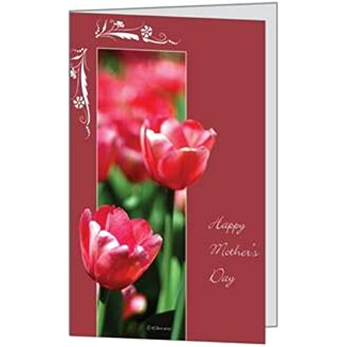 Happy Mother Day Mom Love Mommy Tulips Pretty Wife Beautiful Greeting Card 5x7 by QuickieCards Sales