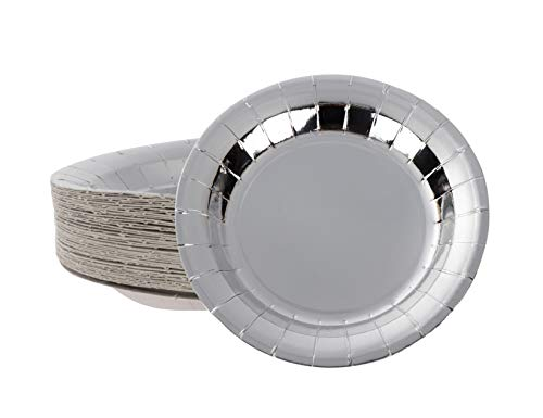 Disposable Plates - 48-Pack Round Paper Plates Party Supplies for Appetizer, Lunch, Dinner, and Dessert, Kids Birthday Party, Silver Foil, 9 x 9 Inches