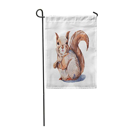 Semtomn Garden Flag 28x40 Inches Print On Two Side Polyester Brown Forest Red Squirrel Eating Walnut Watercolor Painting Orange Animal Abstra Home Yard Farm Fade Resistant Outdoor House Decor Flag ()