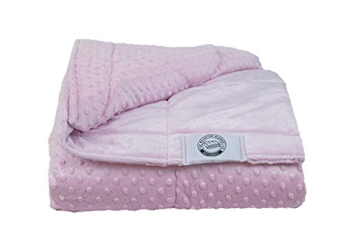 Cheap Kids or Travel-Sized Weighted Blanket - Made in America - 1 Piece for Easy Care and Cool Sleep - Size & Color Options (Pink 10lb 42x54) Black Friday & Cyber Monday 2019