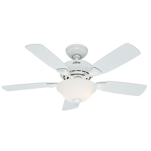 Hunter Indoor Ceiling Fan with light and pull chain control - Caraway 44 inch, White, 52080