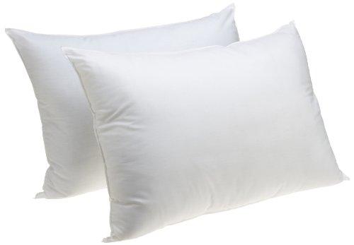 Jumbo Sham Stuffer Pillow, Set of 2