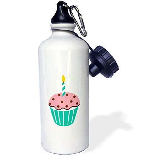 (Sinluen Chocolate Peppermint Cupcake Cartoon Novelty Sports Water Bottle Gift for Friend Men Women Aunt 21oz)