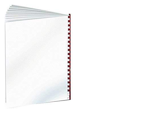 DIN A4 250/G//MQ bianco Renz rueckwaende Chromo da un lato lucido