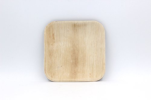 EcoSouLife Palm Leaf - Sq Plate 8