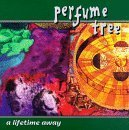 Lifetime Away by Perfume Tree (1996-06-04)