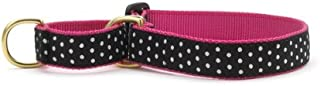 "product image for Up Country Black/White Dot Martingale Dog Collar: Large (1"" Width)"