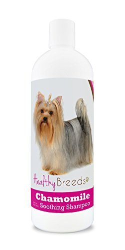 Healthy Breeds Chamomile Dog Shampoo & Conditioner with Oatmeal & Aloe for Yorkshire Terrier  - OVER 200 BREEDS - 8 oz - Gentle for Dry Itchy Skin - Safe with Flea and Tick Topicals