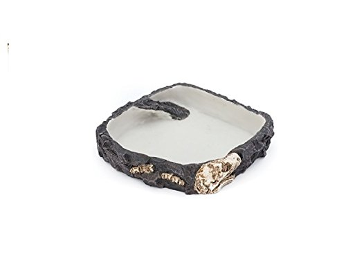 Our Reptile & Amphibian Fossil Rock Dishes Make Perfect Food & Water Feeding Bowls Guaranteed!! (Large)