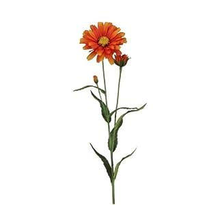 BELLAFIORA 01AMAZ019508 Artificial Flowers, Daisy, Orange 109