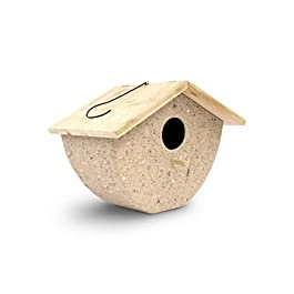 23 Bees, 1 Hole Bird House for Outside/Indoors/Hanging, Kits for Children & Adults, Eco-Friendly Coffee Husk Decorative Birdhouse & Home Decoration, Outdoors Feeder for Birds (1 House Eco)