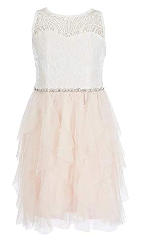 Rare Editions Pink Lace Embellished Tulle Dress White 16