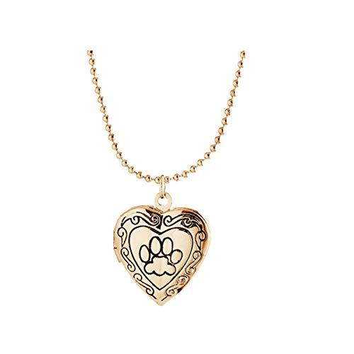 (IDB Remembrance Animal Dog Paw Print Photo Frame Heart Locket Necklace (Gold Tone) )