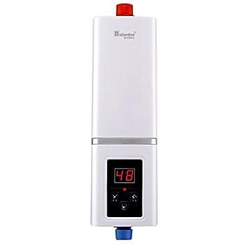 Ajuste automático Potencia calentador de agua eléctrico de temperatura constante y calefacción instantánea AC 220 V