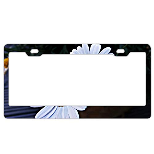 SDGlicenseplateframeIUY Roses Alstroemeria Flowers Bouquet Alumina License Plate Frame 2 Hole