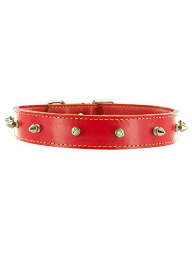 "Kakadu Pet Studly Leather Studded Dog Collar, 3/4"" x 18"", Red"