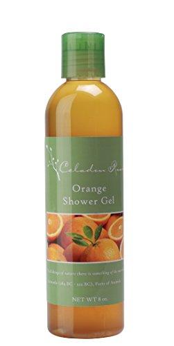Celadon Road Orange Shower Gel - Organic Ingredients and Essential Oils - Sulfate and Paraben Free - Best All Natural Shower Gel - 8 oz - Made in (Angel Scented Shower Gel)