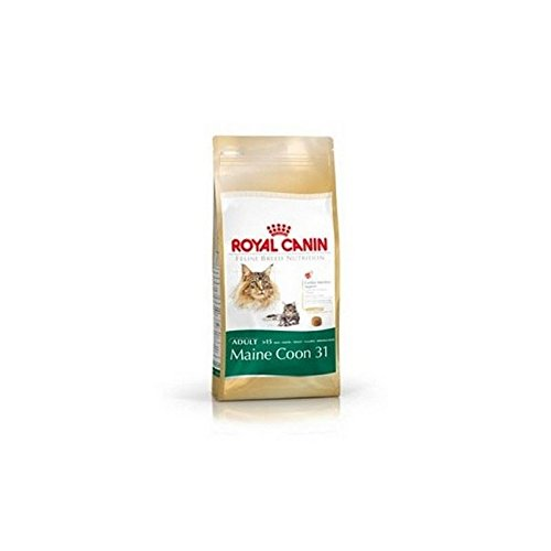 well-wreapped Royal Canin Adult Complete Cat Food for Maine Coons with Chicken (2kg) (Pack of 2)