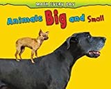 Animals Big and Small, Daniel Nunn, 1432957333