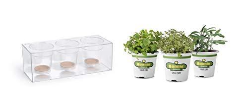 Bonnie Plants Clear Planter & Cooking Herbs - 3 Pack | Indoor Self-Watering Pot | Fresh Seasoning Herbs | Oregano, Thyme, Sage
