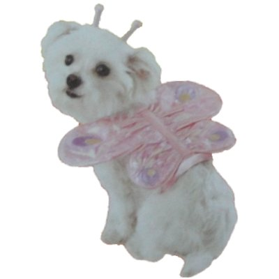 Dog Pink Butterfly Costume with Antenae Pet (Butterfly Costume Target)