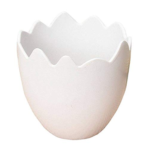 Egg Shaped Flower Plant Pot Container White N3A4