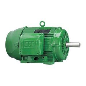Weg 15036eg3g445ts w22 severe duty and general purpose for Weg severe duty motor