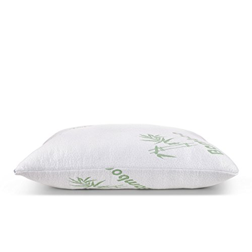 2 Pack Queen Bed Pillows for Sleeping with Shredded Memory Foam and Bamboo Hypoallergenic Washable Cover- Plixio