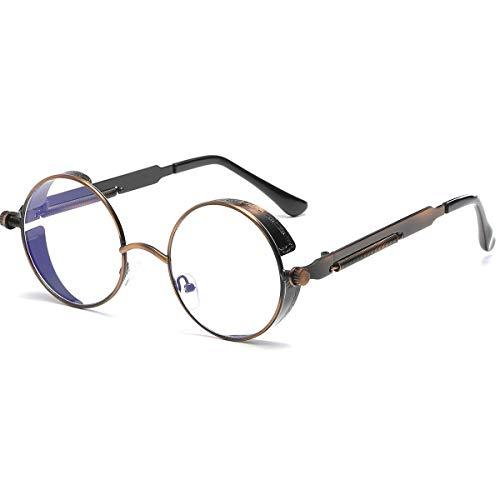 Vintage Retro Fashion (Dollger Vintage Steampunk Sunglasses for Women Men Retro Metal Round Circle Frame Sunglasses(Transparent lens/Bronze frame))