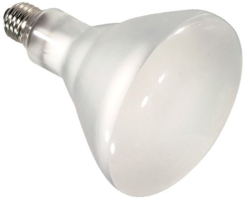 24 Pack Satco S4516 65 Watt 920 Lumens BR40 Halogen Reflector Flood Frosted Light Bulb by Satco