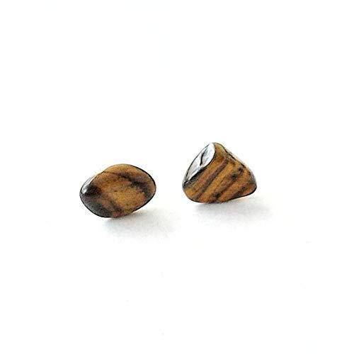 Mens Raw Crystal Studs Natural Tigers Eye Sterling Silver Earrings Hypoallergenic and Nickel-Free Earrings