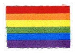 Art Blinger LG Rainbow Pride - 2