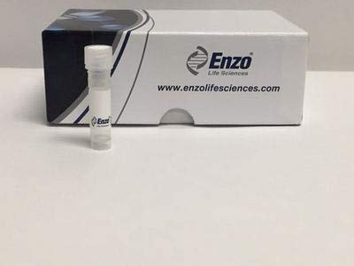 522-023-3010 - Size : 10 micrograms - CD134L (Soluble) (Human), (recombinant), Enzo Life Sciences - Each