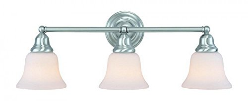 Dolan Designs 493-09 3Lt Bath Satin Nickel Brockport 3 Light Bathroom Fixture,